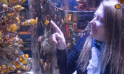 US Expert and environmental engineer Dr. Jenna Jambeck visits the Two Oceans Aquarium